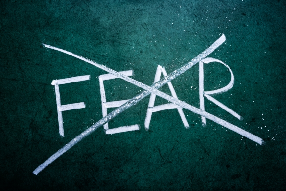 no-fear-year-image1